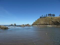 the good, wide view (carolyn_in_oregon) Tags: oregon pacificocean ecolastatepark coast crescentbeach jacob al allie