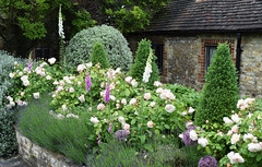 Amberley Open Gardens 2016 (Mark Wordy) Tags: amberleyopengardens 2016 westsussex village cottagegarden roses foxgloves pittosporum barn