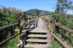 Torbiere - Passerella (A.M.F.G) Tags: franciacorta iseo laguna passerella passaggio riservanaturale