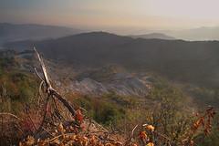 Monte Cappuccio (varano de Melegari Parma) (Max Short) Tags: monte montagna montagne appennini mountains mountain italy sun sole tre tree trees cielo sky