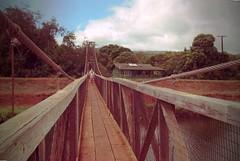 Swinging foot bridge of Old Hanapepe (Wha'ppen) Tags: hawaii northshore kauai hawaiianislands
