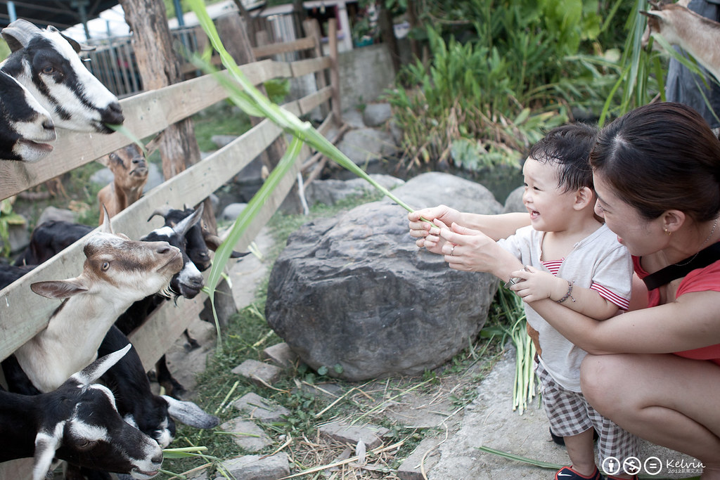 20120714宜蘭半日遊.嘉澎碳烤-10.jpg