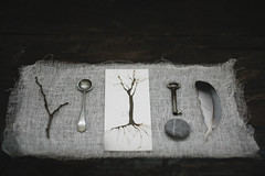 miscellany lll (sue.h) Tags: key feather spoon collection pebble twig inkdrawing arranged helios helios44m4 artlibre