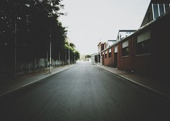(ikhals) Tags: road street city trees urban italy building buildings way vanishingpoint italia structures structure avenue iphone casale monferrato casalemonferrato chasinglight iphone4 vsco iphoneonly snapseed vscocam fartoodope