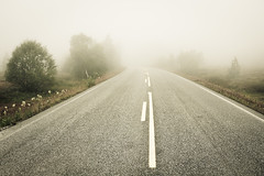 Road to nowhere (Helena Normark) Tags: mist norway fog norge 5d srtrndelag 3514 canoneos5d distagont1435 roaddisappearinginmist langlidalen