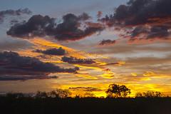 Kakadu National Park sunset Northern Territory