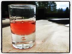 strani liquidi da introdurre nel corpo (palladipelo_75) Tags: altoadige valbadia grappa sdtirol dolomiti iphone6 colour alcool instagramapp square squareformat iphoneography lofi