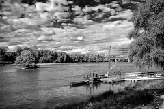 Paysage ligrien (Fabrice_B) Tags: paysage landscape loire tours tourscity touraine loirevalley myloirevalley noiretblanc nb blackanwhite fuji fujifilm x20 monochrome bw