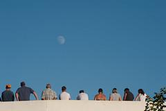 (anto291) Tags: camargue lessaintesmariesdelamer arena arnes toro luna