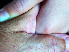 Holding Love In Your Hand (Alan FEO2) Tags: hands skins fingers thumbs nails wrinkles rough young old granddaughter grandad holding hold opposites macromondays hmm 116picturesin2016 smooth panasonic dmc g1 2oef