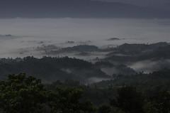 Sajek 2016 (Sharif Ripon (totographer)) Tags: landscape cloud color sharif green sky rainy bangladesh nikon nikond7000 cht hill mountain valley