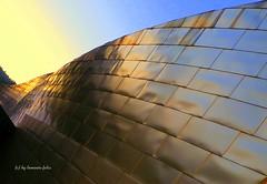 Perspectiva...Museo Guggenheim Bilbao. (lameato feliz) Tags: museoguggenheim bilbao titanio perspectiva pasvasco euskadi