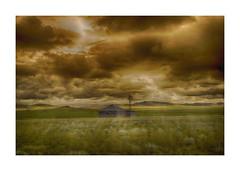 """The gamble never paid off""-Abandoned Wyoming (j_piepkorn65) Tags: abandoned ruralexploration ruraldecay oncewashome homestead windmill wyoming niobraracounty niobrara smoky sunset"