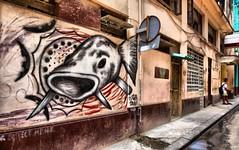 Fish outta water (digitaloptics) Tags: graffiti paint painting cuba havana colour art fish drawing dramatic spray streetart striking street bold bright big