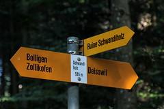 Wegweiser Schwandiholz ( BE - 585m - Standorttafel Berner Wanderwege ) bei Deisswil im Worblental im Kanton Bern der Schweiz (chrchr_75) Tags: albumzzz201609september christoph hurni chriguhurni chrchr75 chriguhurnibluemailch september 2016 kanton bern kantonbern standorttafel standort tafel markierung wegweiser berner wanderwege wanderweg site map plan du mappa del sito sidkarta sivustokartta wanderwegweiser bernerwanderwege wanderwegmarkierung trail hiking hikingtrail albumstandorttafelsammlung