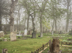 fog in the Graveyard, Alderney (neilalderney123) Tags: 2016neilhoward alderney 2016neilhoward graveyard fog weather olympus