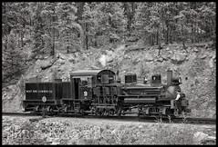 _JM18108 (saltley1212) Tags: shay lima west side lumber co 9 3truck georgetown loop railroad