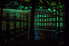 Light Painting (DustinJ05) Tags: leica m typ240 50mm f14 summilux light painting crawl space under house iphone flashlight green alien eerie lattice wood brick