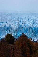 13970202057_0b1a845b37_o (FelipeDiazCelery) Tags: argentina patagonia glaciar perito moreno