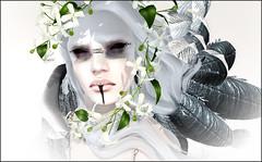 Vampire Sunrise (skye.nefekalum) Tags: naminoke ama tfc thefantasycollective