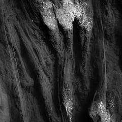 River Flow 022 (noahbw) Tags: chicagoriver d5000 middleforksavanna nikon abstract blackwhite blackandwhite bw landscape marshland monochrome natural noahbw prairie river square summer water wetlands
