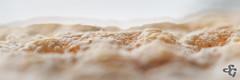 Relief jurassien (Stphane Gavoye) Tags: macrophotographie bleudegex fromage macro