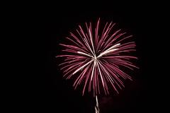 _MG_1225 (sdferrell) Tags: dmt fireworks ny