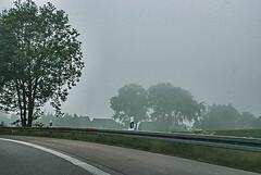 10-05-23 bw neb kurv sal dsc02426-fad (u ki11) Tags: bw dynamik gitter horizont kurve nebel twunscharf