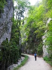 Piatra Craiului (stefan.selle) Tags: piatra craiului knigstein rumnien romania