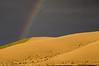 Up On Goose Creek (Dex Horton Photography) Tags: palouse rainbow wheat farm farming rain sun storm gold potofgold golden spectacular harvest bestof washingtonstate dexhorton