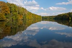 L'automne, dj (Corinne Queme) Tags: fall landscape lake water reflection trees clouds france automne paysage tang reflet eau arbres nuages commelles fort chantilly