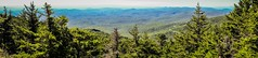 nature trail scenes to calloway peak north carolina (AgFineArtPhotography.com) Tags: nature trail scenes tocallowaypeak northcarolina grandfather mount mountain danielboonetrail craggy trees hike highest beautiful camping relaxing healthy sunnyday blueridge parkway nc smokymountains walk rocks forest wilderness strenuous viaduct panorama