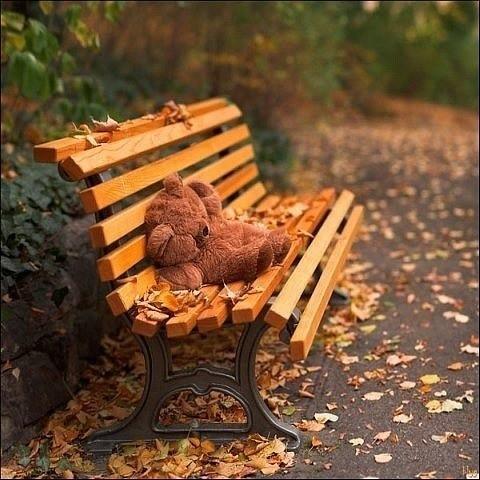 Сызрань осень картинки