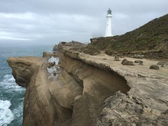 Castlepoint Lighthouse Castlepoint Wairarapa Coast North Island New Zealand (eriagn) Tags: marine fossils wairarapa fossilized rockformation landscape lighthouse castlepoint newzealand ngairehart iphone sea ocean coastal wave waveerosion castlepointlighthouse cloud flax