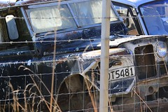 Landrover Smash Palace Land Rover Horopito Abandoned in New Zealand (eriagn) Tags: old newzealand house building history abandoned car rural canon eos pig moss wire rust mt cattle sheep timber decay farm memories shed ute hut valley barbedwire vehicle historical northisland isolation lichen wreck landrover ruapehu isolated coils dilapidated kingcountry kenwood mtruapehu dwelling deterioration woolshed whanganui hardship centralplateau toil kakahi horopito waimarino pipiriki crashpalace maintrunkline reverting retaruke eriagn ngaruhoemt hauhangatahinational parkkaitieke retauruke