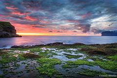 Sunrise (Jannis Srensen) Tags: ocean blue sunset red sea sky orange sun seaweed cold green beautiful stone clouds sunrise exposure calm faroeislands faroe skyes froyar frerne viareii vioy fugloy vidareidi eisvk exopsure