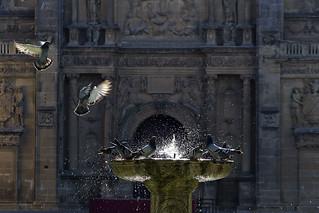 Plaza de Vazquez Molina, detalle de la fuente y fachada del Salvador