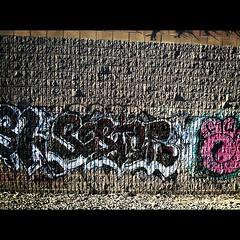 Sestor wkt amc lolc (I murk citys) Tags: up graffiti son amc 119 behr wkt lolc sestor