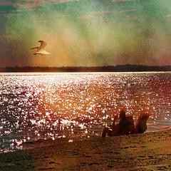 ----- relax ----- (xandram) Tags: light man beach water photoshop sand chair gull textures