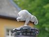 Schloss Dyck Classic Days - Hood Ornament