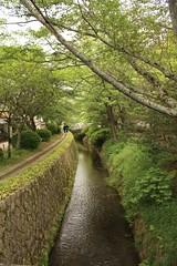 Philosopher's Path - Kyoto (Alejandro Muiz Delgado) Tags: japan temple kyoto religion shinto shintoism sintoismo japon shinto