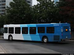 York Region Transit #313 (vb5215's Transportation Gallery) Tags: yrt york region transit 2003 new flyer d40lf