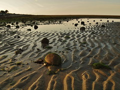 low tide surprise (cindy-lou-boo) Tags: beach sunrise sand olympus ripples lowtide tidal