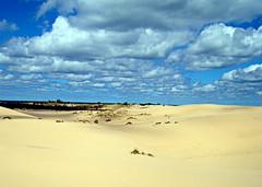 sand and sky (Hilarywho) Tags: landscape michigan dunes silverlakesanddunes sandandsky ishouldgoupnorthmoreoften