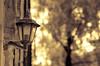 The Light (Explored) (1963chris) Tags: light summer building tree lamp lightbulb stone wall nikon raw sigma retro visitorcentre splittoned leightonmoss outdoorlight d5100 mygearandme mygearandmepremium mygearandmebronze mygearandmesilver