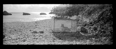 "barreras/barreres/barriers (Jose Costa ""Laujan"") Tags: toycamera ibiza bordercollie eivissa tmax400 panoramawidepic niudesaguila"