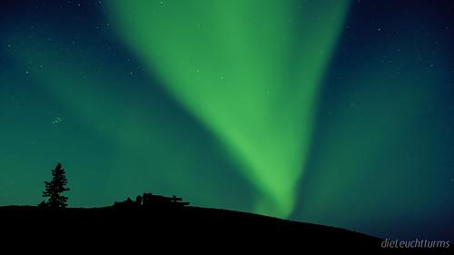 Nordlichter am Yukon