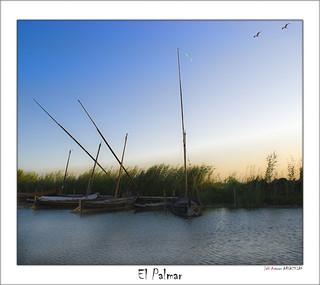 Barcas de El Palmar
