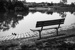 sit back and enjoy (mariosworld343) Tags: park morning light white lake black water canon bench relax eos 50mm peace natural mark ducks calm full ii frame 5d 5d2