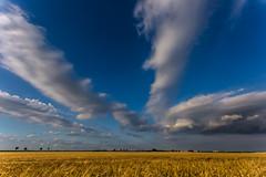 gold 'n' blue (++sepp++) Tags: graben bayern deutschland de landschaft landscape germany bavaria sunny sonnig feld field wolken clouds